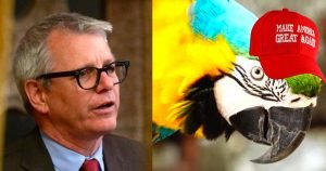 "Liberal MP Adam Vaughan accuses parrot of being ""alt-right extremist"""